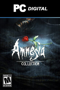 Amnesia Collection PC